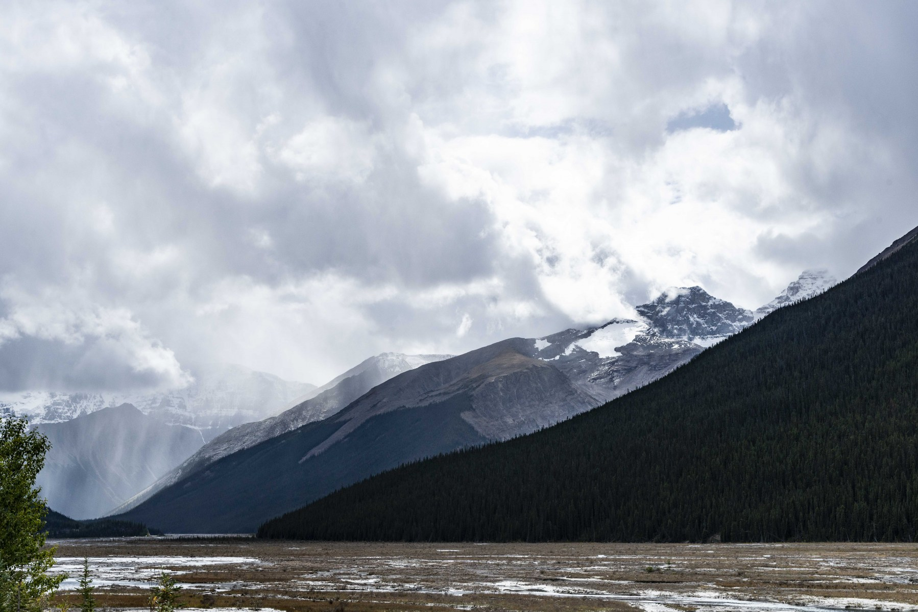 Icefield_5