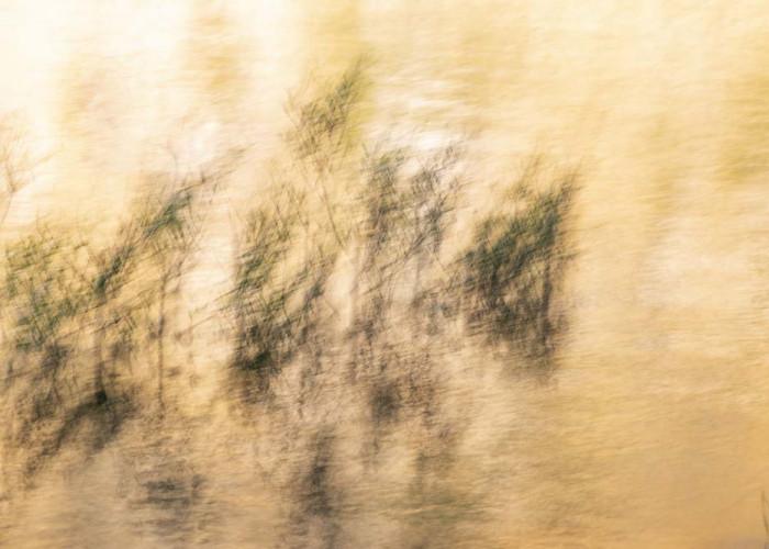 abstrakte Fotoexperimente