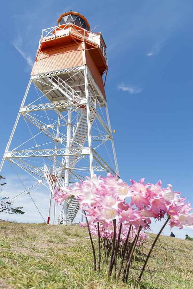 Leuchtturm Farewell Spit