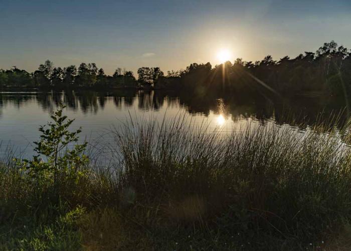 See Dingdener Heide