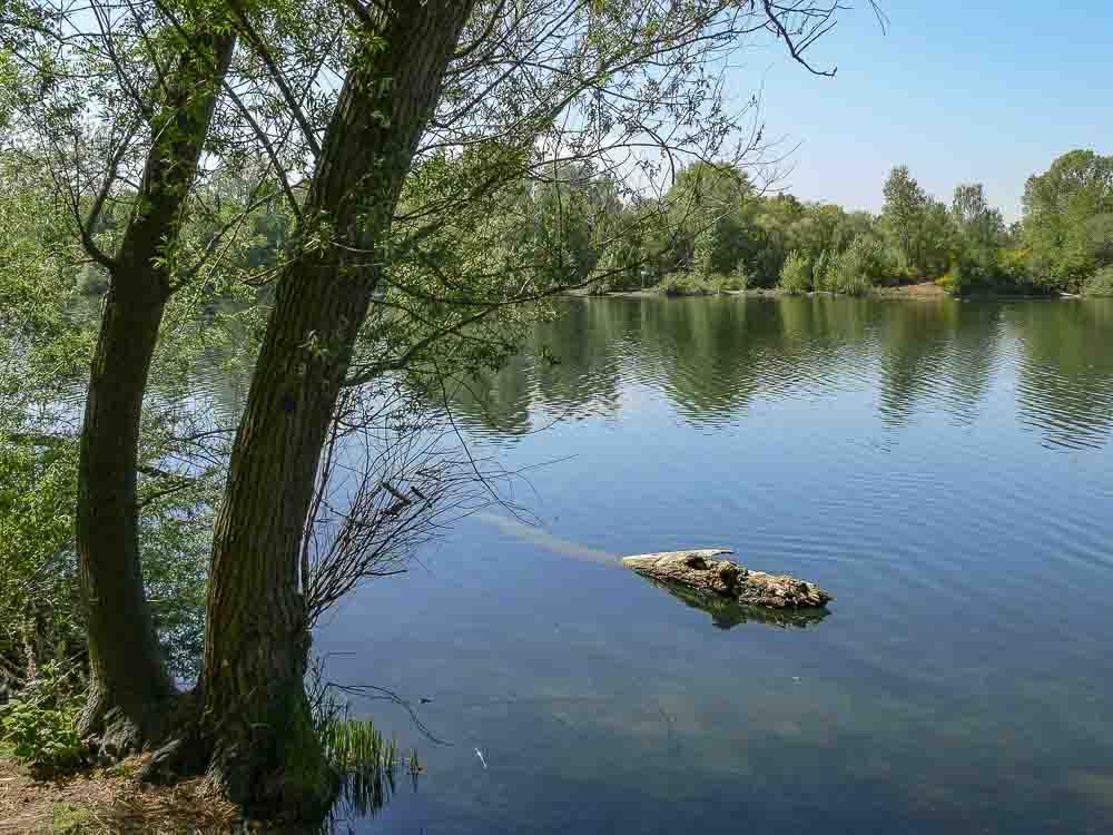 Rotter See Ertrunken