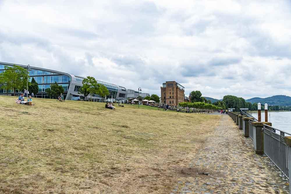 Überblick direkt vom Rheinufer