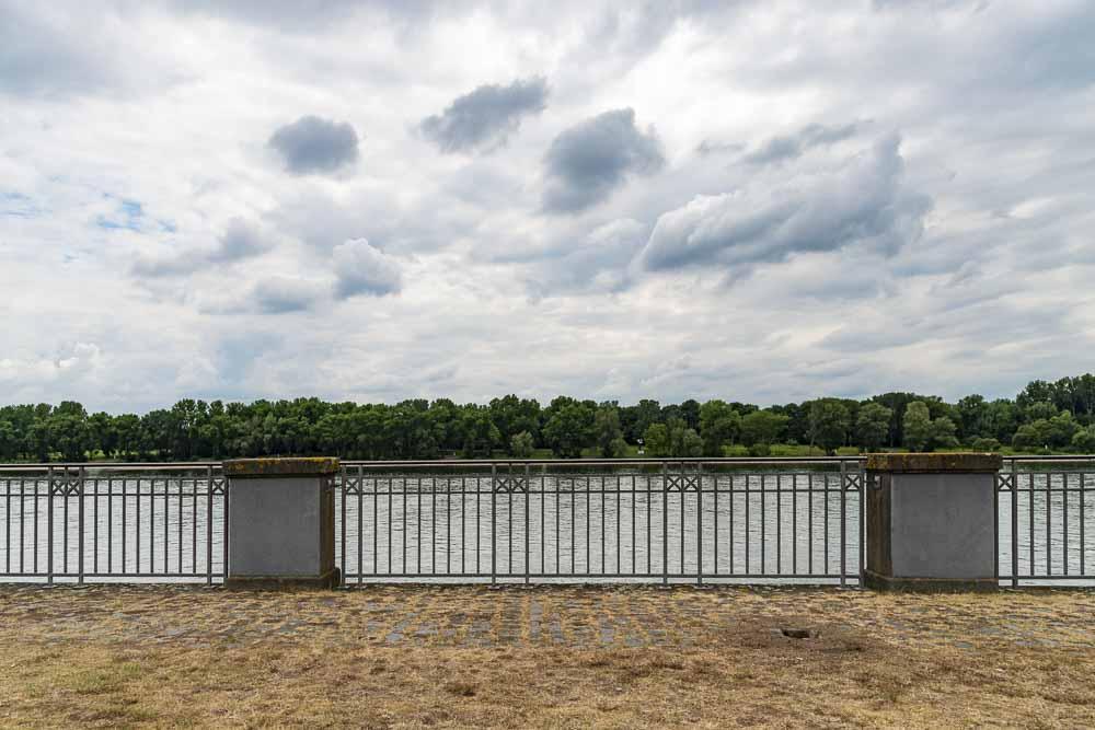 Blick zum Rhein hin