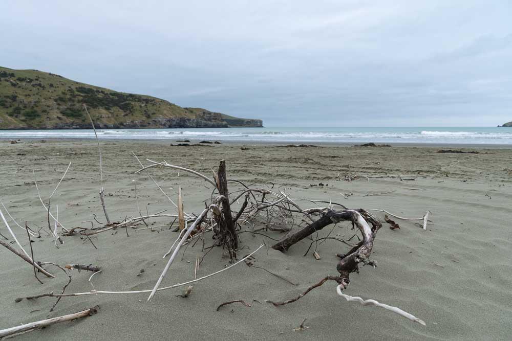 Strand in Okains Bay