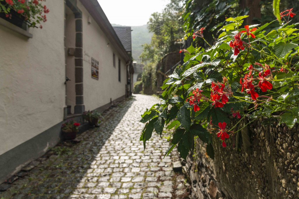 Weg zur Burgruine