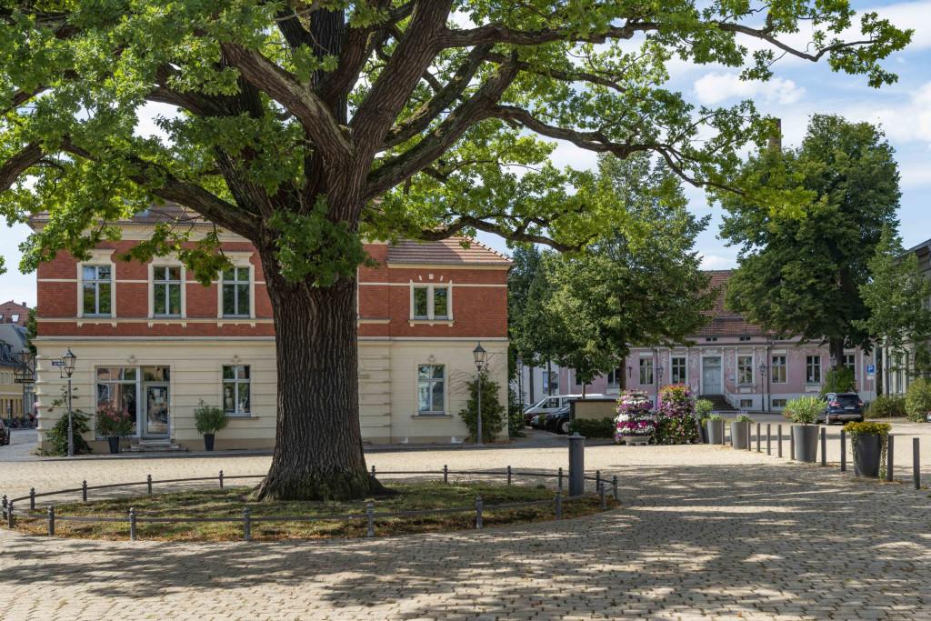 Marktplatz von Werder Havel