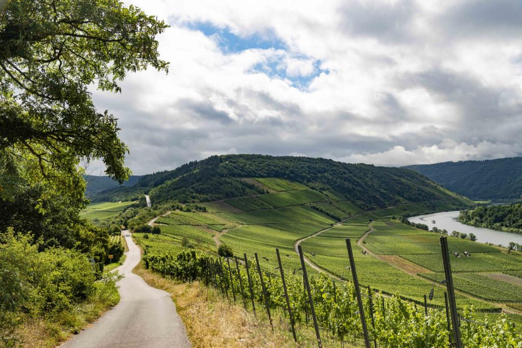 Spazierweg an der Marienburg