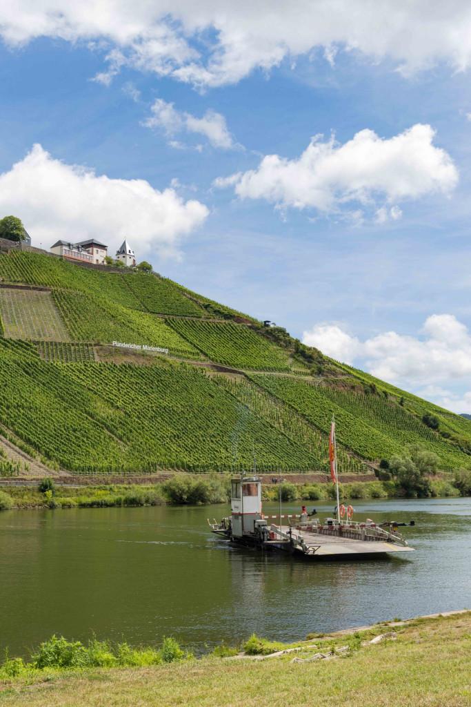 Marienburg von Pünderich aus