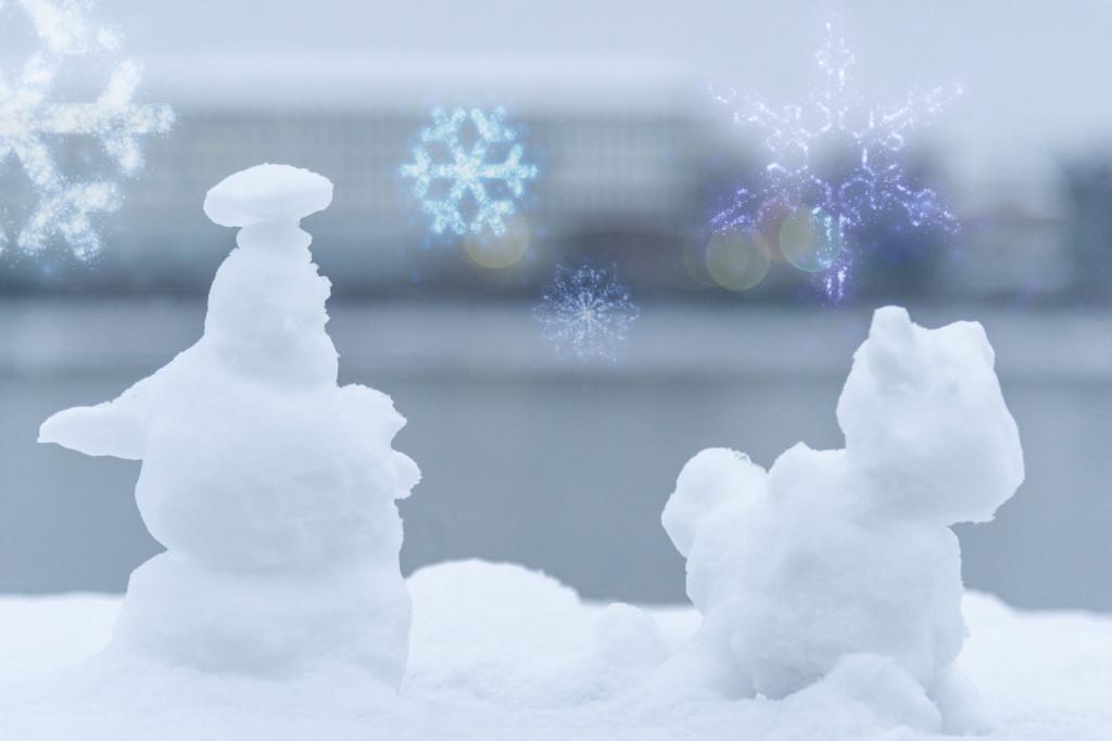 erste Anwendung der Schneeflocken