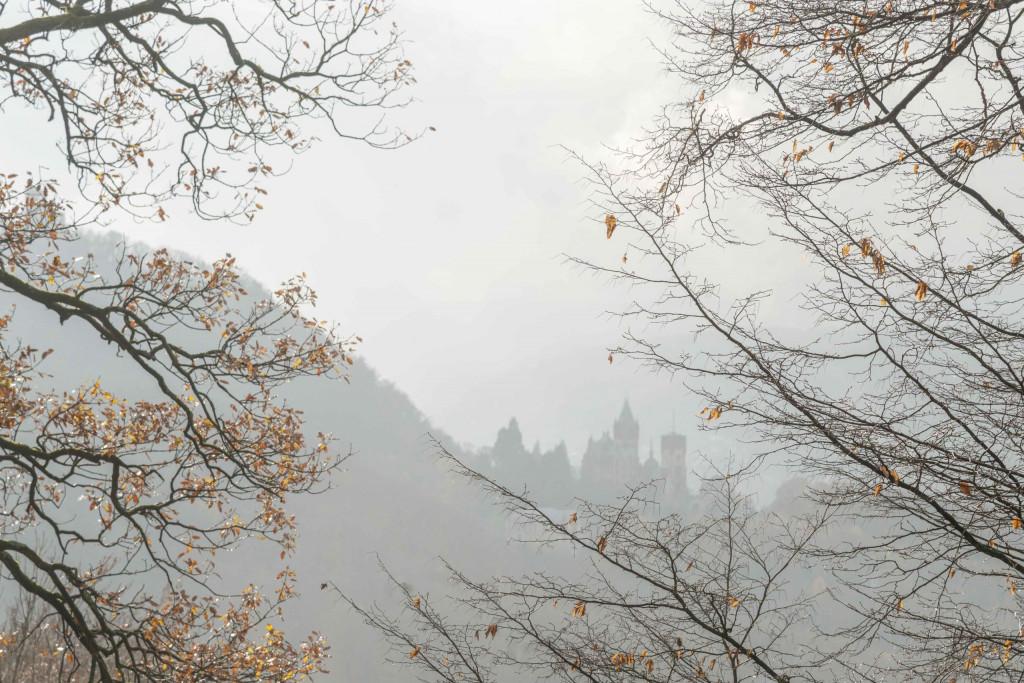 Drachenburg im Nebel
