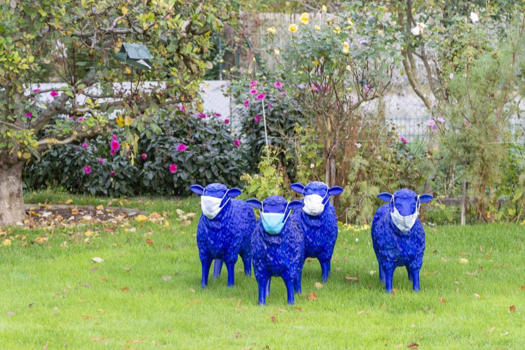 Schafe mit Maske