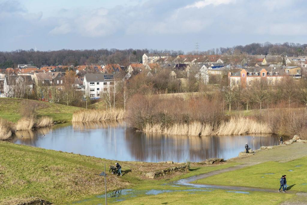 Blick von oben auf den Teich im Erin-Park