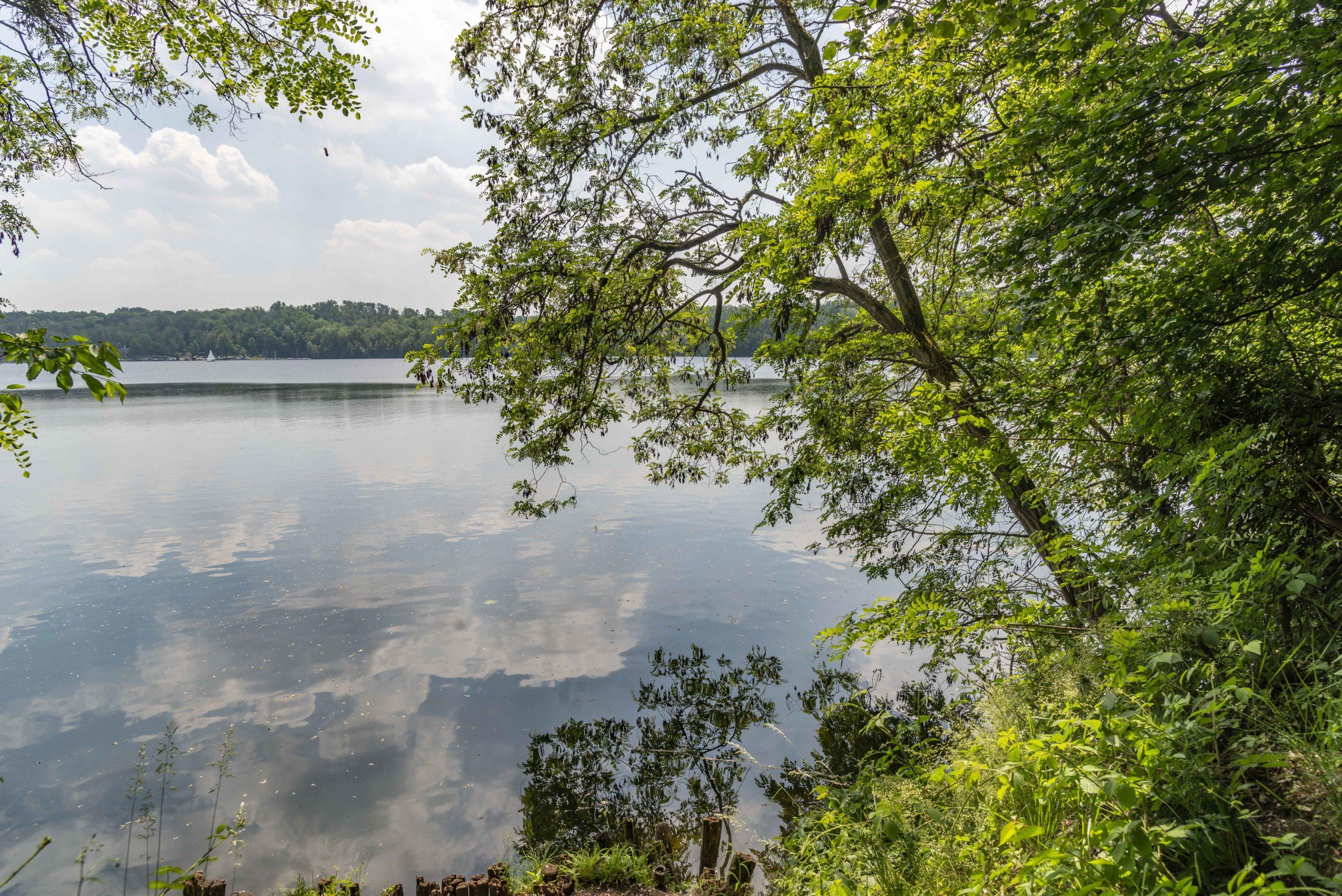 Liblarer See